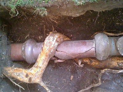 Canalisation bouchee par des racines 400x300 - Comment déboucher une canalisation d'égout