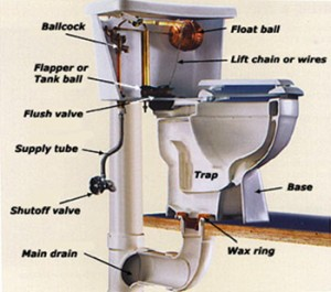 schema toilette diagram 300x265 - Dépannage en urgence en débouchage toilette bouchée à Bruxelles